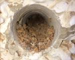 Trabajos por el exterior de vivienda unifamiliar aislada con aislamiento ecológico de corcho natur